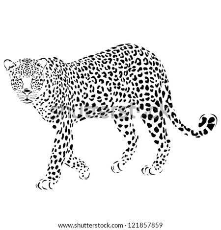 vector leopard silhouette  can