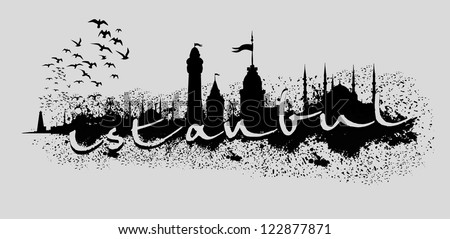 birds and istanbul city vector