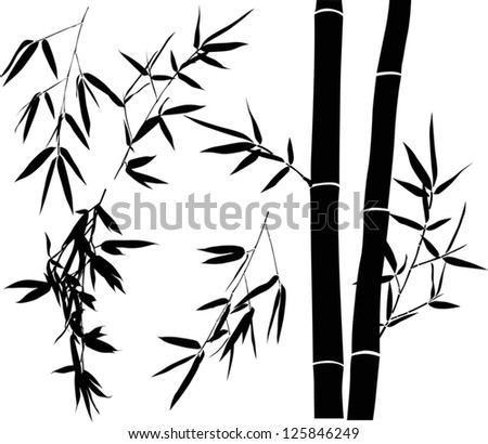 illustration with bamboo