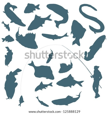 fisherman and fishes vector