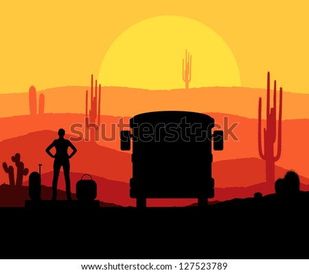 cactus plants in desert sunset