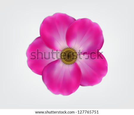 pink flower vector eps 10