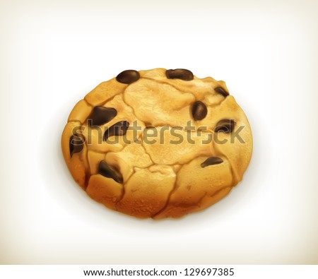 chocolate cookie  vector icon