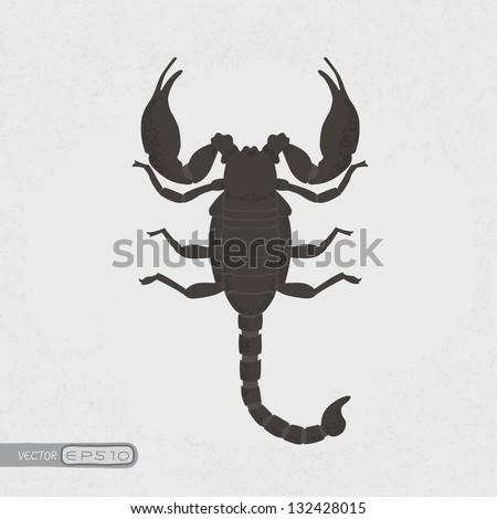 scorpion   eps10 vector format