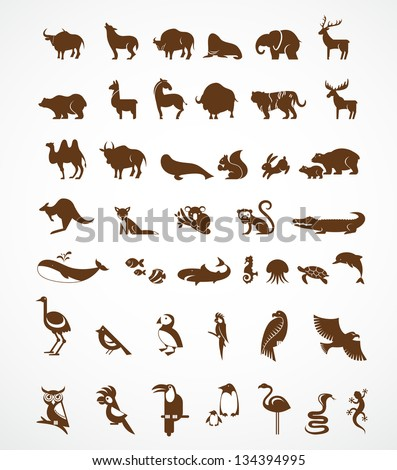vector collection of animal