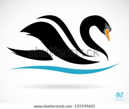 vector image of a swan on a