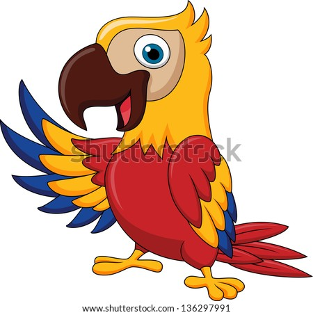 Parrot Cartoon Pictures Cartoon Parrot Parrot Bird