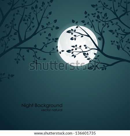 vector night background with