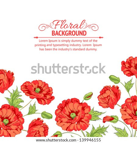 red poppy isolated on a white