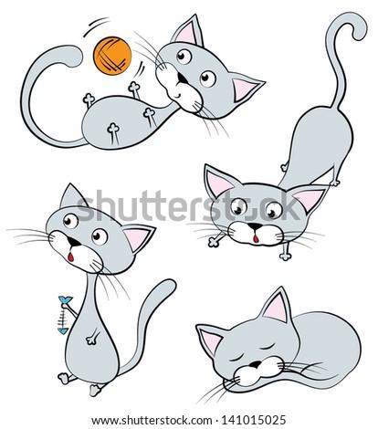 funny gray cats