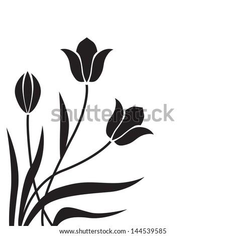 black tulips congratulatory