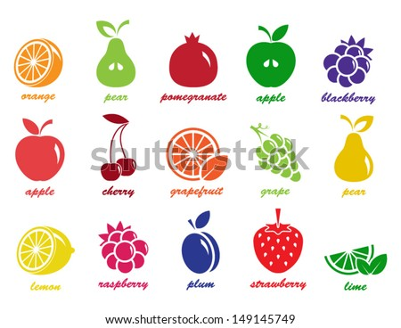 vector collection  fruit icons