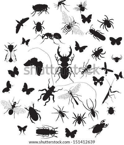 vector set of insect silouettes