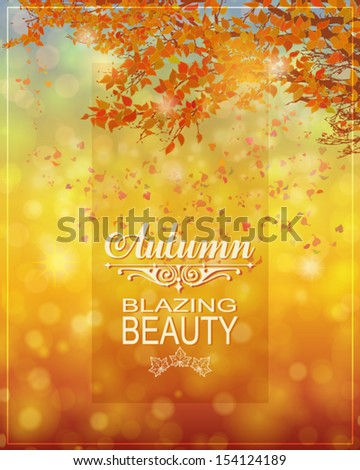 fall background   bokeh