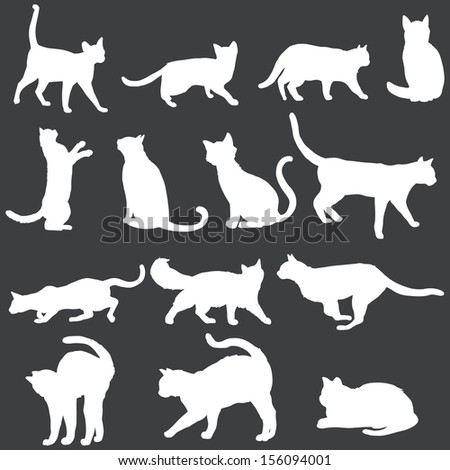 vector white silhouettes of cats