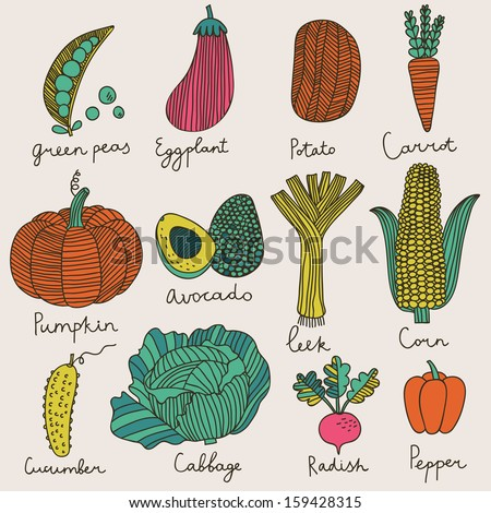 tasty vegetables in vector set