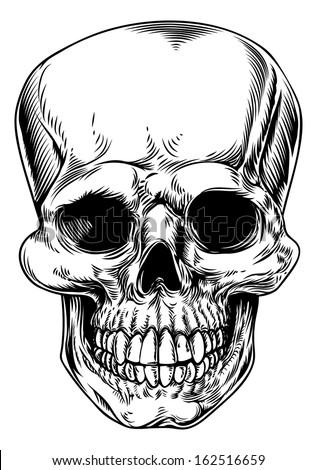 a vintage human skull or grim