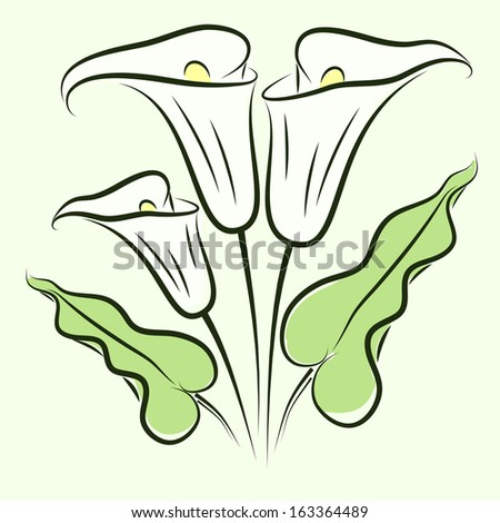 background with color calla