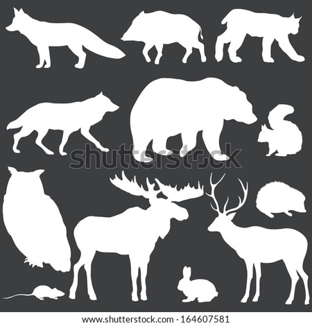 vector set of white forest