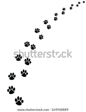 black  footprints of dogs  turn