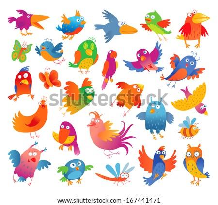 funny colorful birdies vector