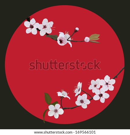 branch flower blossom on red