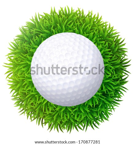 ball for golf on green grass