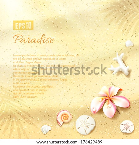 sunny dunes with flower  sand