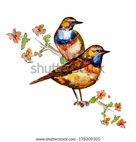 cute birds for your design