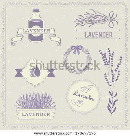 lavender background  herbs