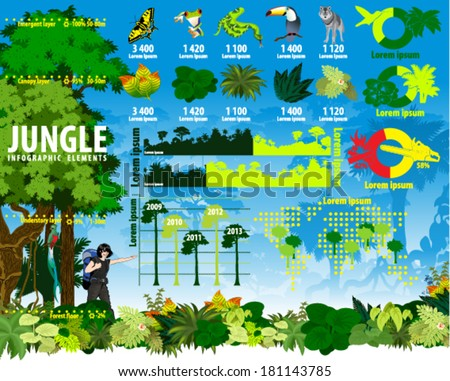 vector jungle rainforest travel