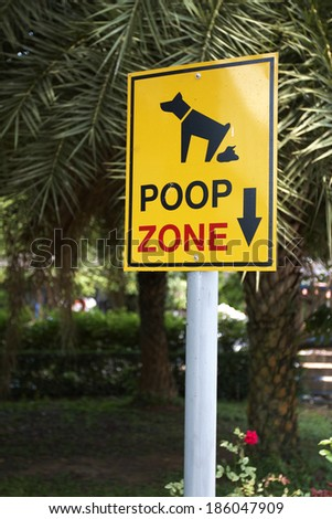 poop zone for dog in thailand