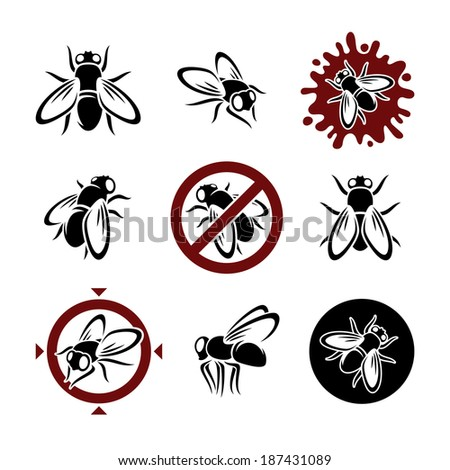 housefly set vector