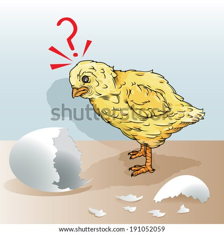 vector drawing of a chick