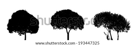 set of tree silhouette isolated