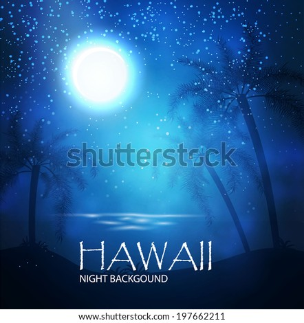 night landscape hawaii vector