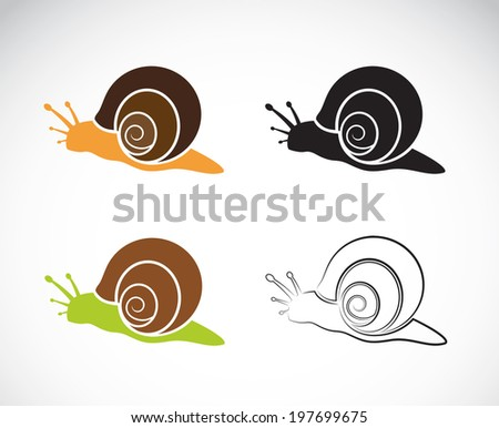 vector image of a snail on