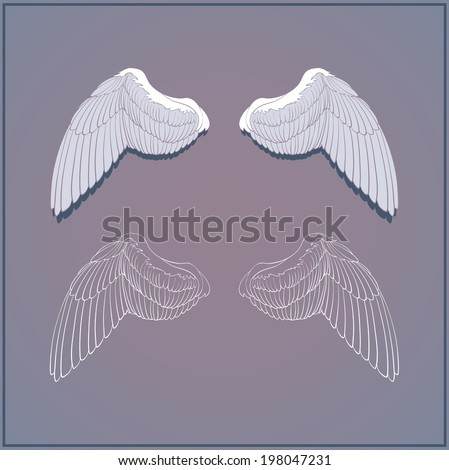 two graphic wings back vector