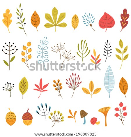 set of hand drawn autumn floral