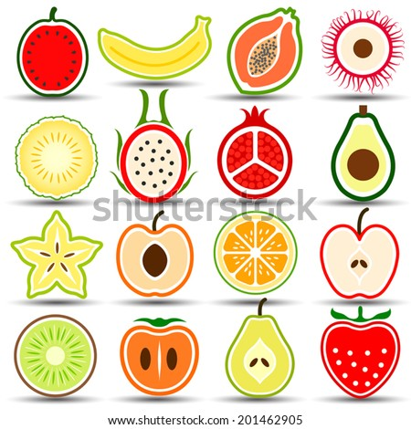 collection of fruits set hand
