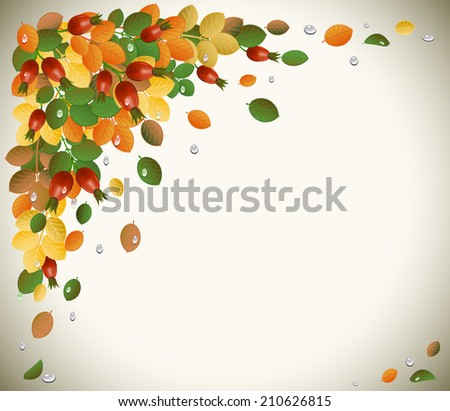 autumn leaves with rose hips