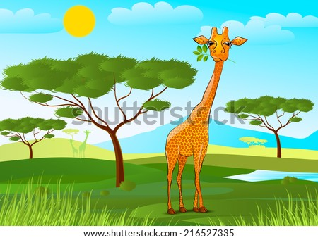 vector illustration giraffe