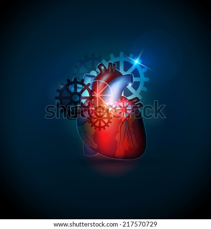 human heart treatment concept