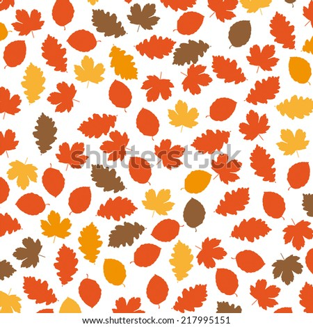 foliage in autumn colors on