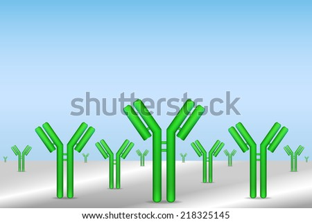 antibodies immobilized on