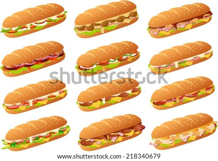 vector illustration of several
