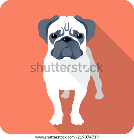 vector dog pug icon flat design