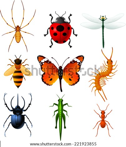 9 colorful insects icons  with