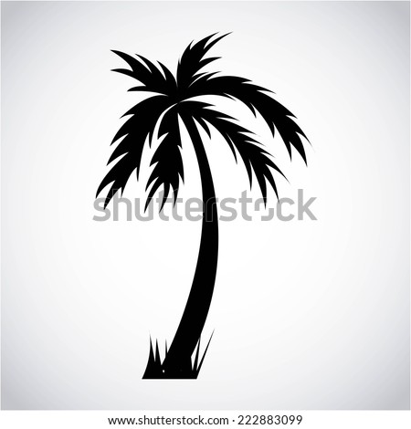 tree palm graphic design