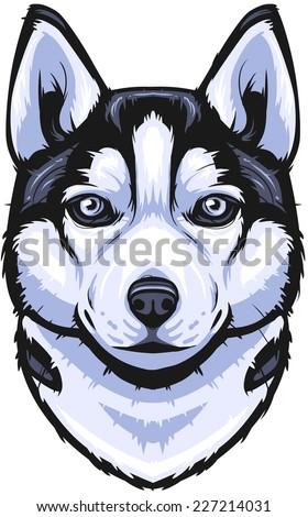 vector siberian husky